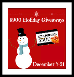 500_Holiday_2015_Giveaway